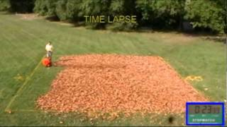 Wheeled Leaf Blower vs. Backpack Leaf Blower
